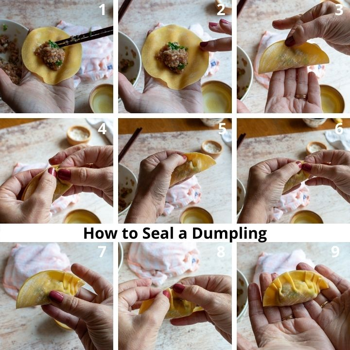 Step by Step showing how to seal and crimp dumplings.