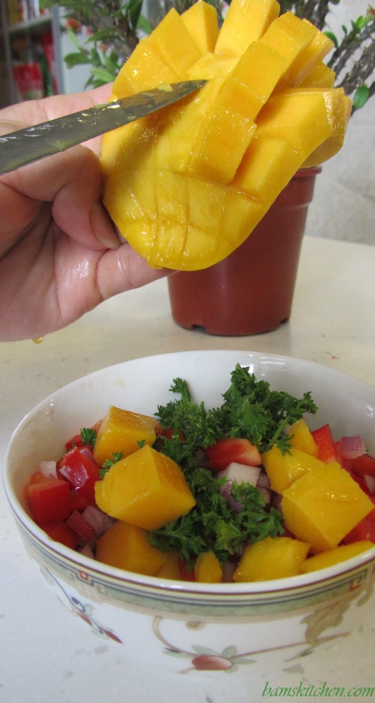 Tropical Spa Mango Chicken
