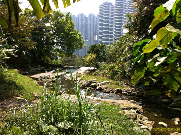 Hong Kong_Hikes_IMG_1200