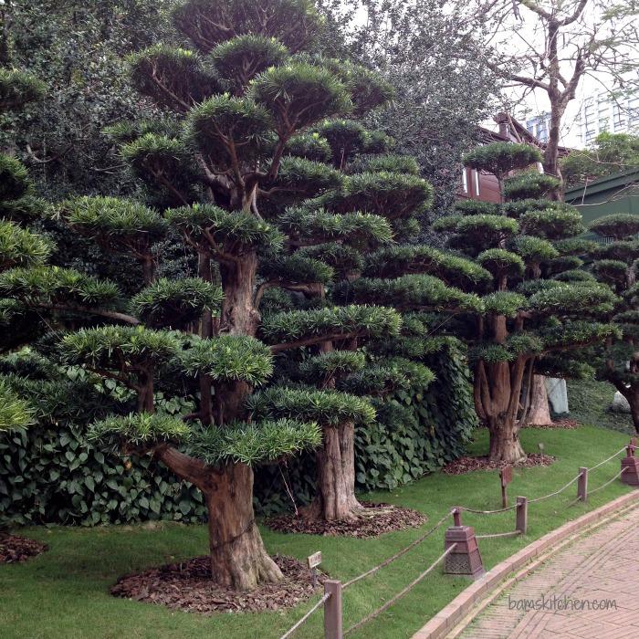 Nian Lian Gardens_IMG_4479