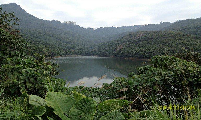 Pok Fu Lam County Park_IMG_0884