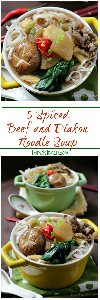 Five Spiced Beef Diakon Noodle Soup / http://bamskitchen.com