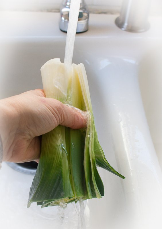 Leeks getting washed our really well in the sink.