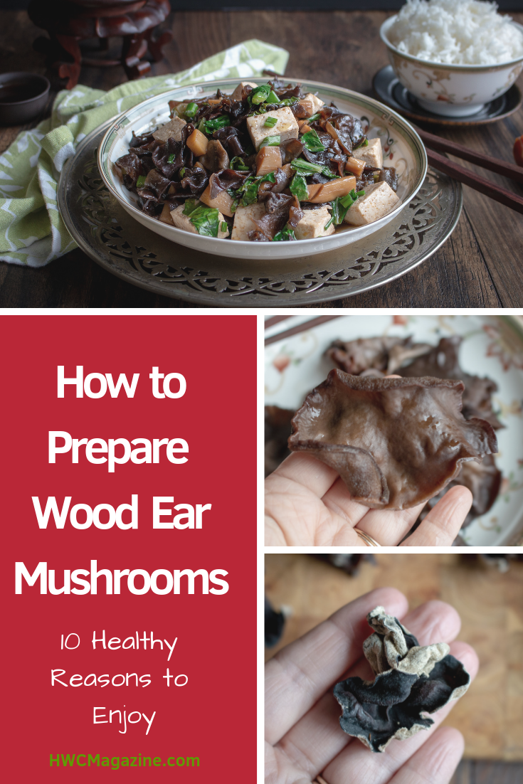 How to Prepare Wood Ear Mushrooms is going to be the best new learned culinary skill this year. Learn 10 healthy facts about this Chinese Black Fungus. Also known as cloud mushroom, pigs mushroom, jelly mushroom, Jew mushroom , etc. #howto #fungus #mushrooms #chinese #tcm #traditionalchinesemedicine #healthyliving #naturalremedy #asianfood #fungus #cloudmushroom #pigsearmushroom #woodearmushroom #mushrooms #glutenfree #vegan / https://www.hwcmagazine.com