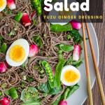 Soba Noodle Salad with Yuzu Dressing / https://www.hwcmagazine.com