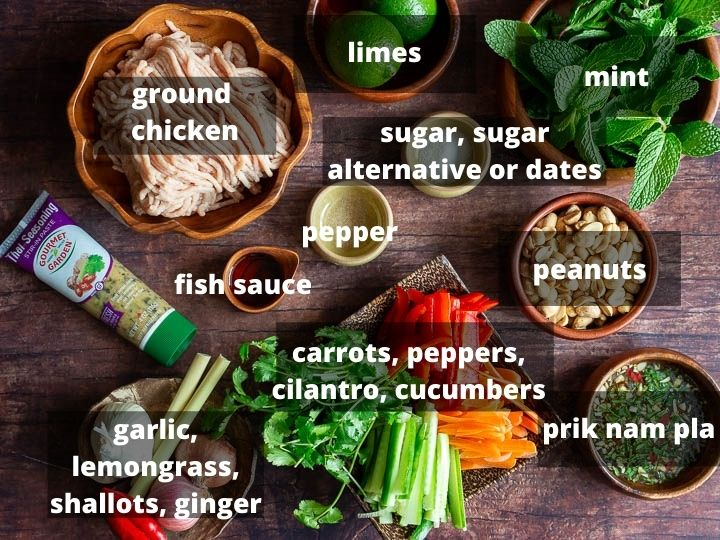 Ingredients like ground chicken, aromatics and sauces used for recipe.